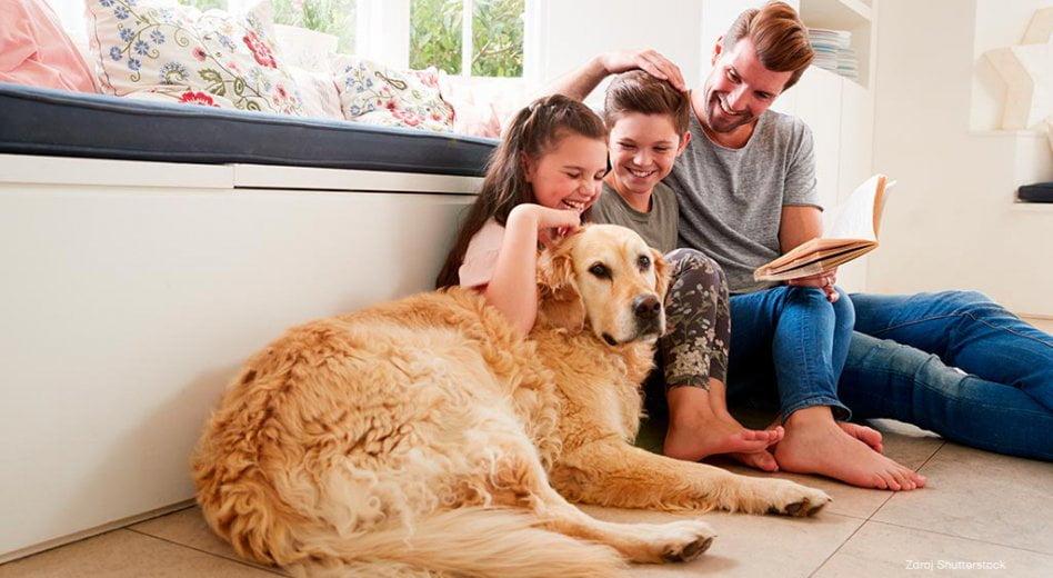 Mýty ostudiu jazyků: Starého psa novým kouskům nenaučíš