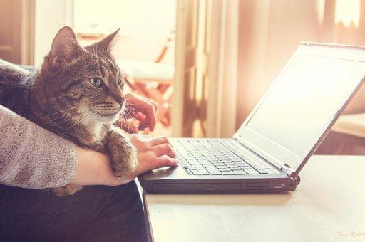 Zena s notebookem a kockou